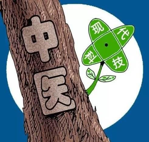 中西医的合理结合(图片来自于网络)