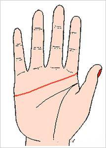 手掌三条主线清晰