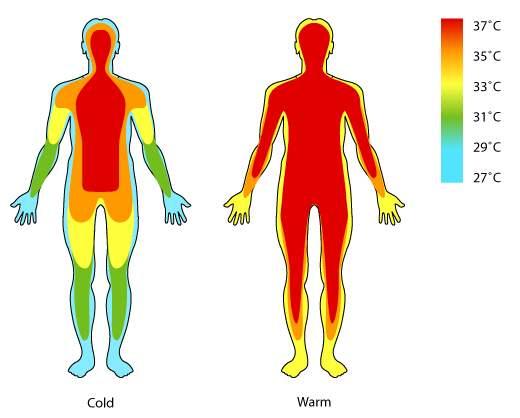 朋友的体温一直很低,通常在35.5摄氏度左右(普通人平均体温是37摄氏度),所以37摄氏度对他来说就是发烧