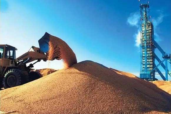 现代高产量堆积如山的稻谷