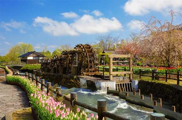 无论是京都、江户等大城市,还是乡下地方都有搭建引水道,清洗蔬果、衣物等日常景象随处可见。