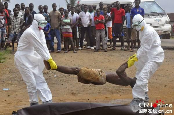一个埃博拉病毒的直径只有80纳米,虽然极小,却能毁灭整个人体。