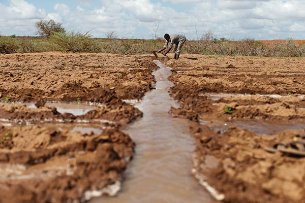 气候暖化引致的乾旱祸及东非农民。