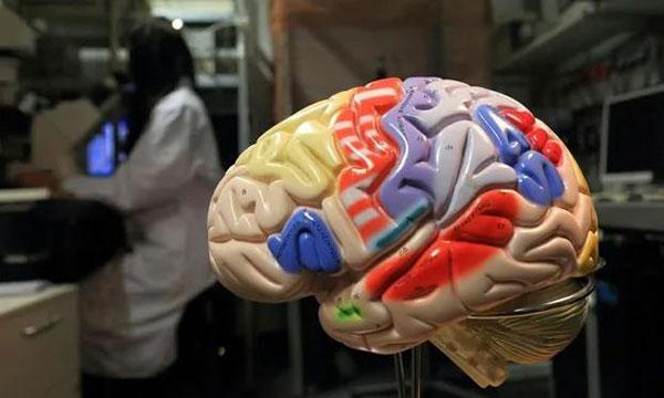 技术难度其实小于在培养皿里养人类器官。但是伦理上麻烦很多。