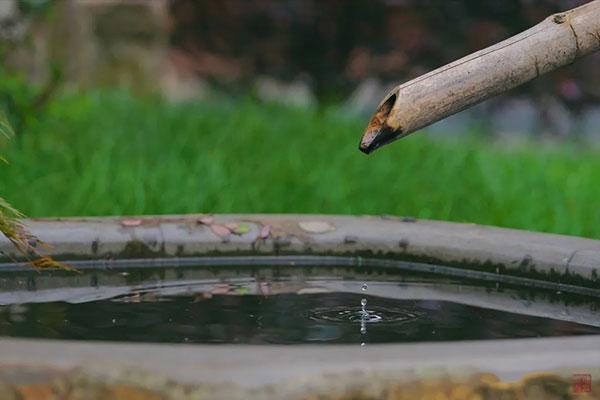 十天干壬水与癸水的区别