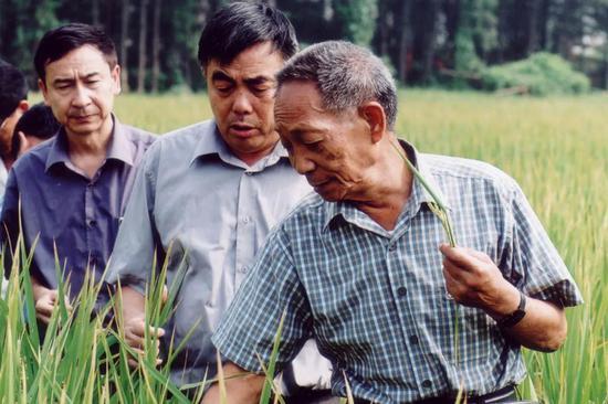 袁隆平的生长时期,正值共和国成立前的动荡岁月