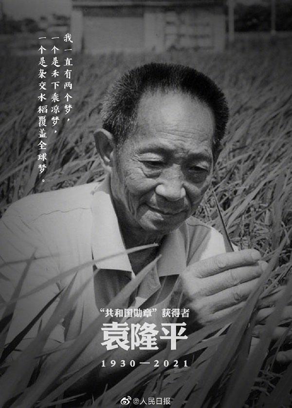 """""""杂交水稻之父""""袁隆平逝世,享年91岁"""