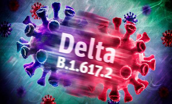 德尔塔毒株冲破了疫苗的防守阵地,开始肆虐了。