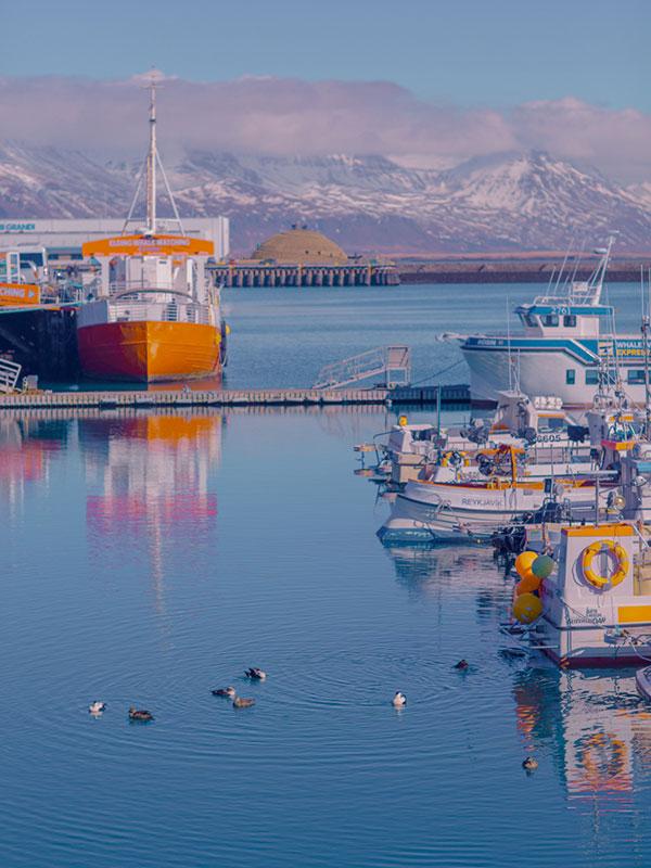 冰岛是世界上最环保的国家之一