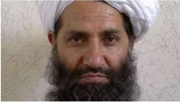 从未公开现身且行踪几乎不曝光的该组织最高领导人阿洪扎达(Hibatullah Akhundzada)目前已经身在阿富汗。